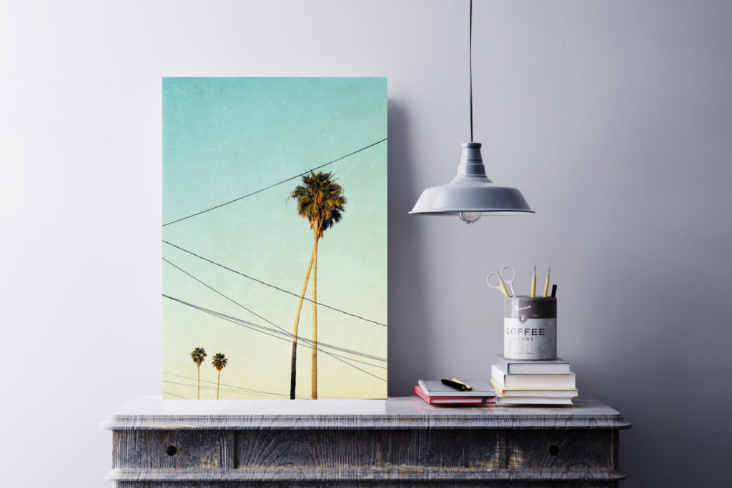 Santa Cruz Palm Trees by SeptemberWren on Etsy